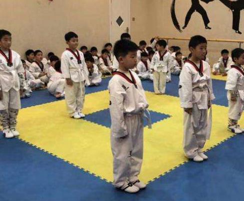 跆拳道基础理论