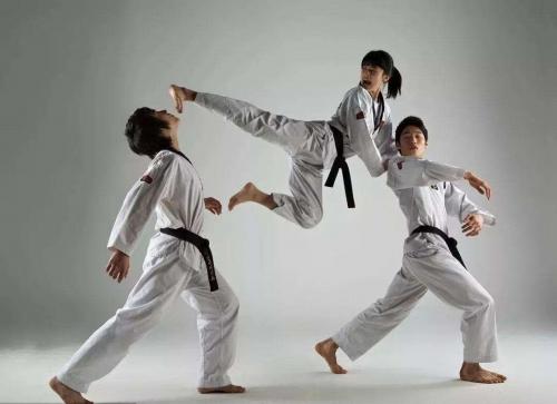 针对儿童和成人的跆拳道训练